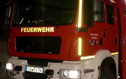 41 / 2017 Feuerschein in Werkshalle